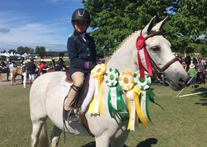 Ottawa, Show Team, Horse Riding, Lessons, Equestrian,